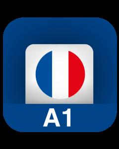 Lingua francese A1 - Principiante